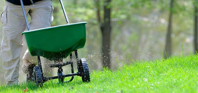 HOW TO FERTILIZE YOUR GARDEN