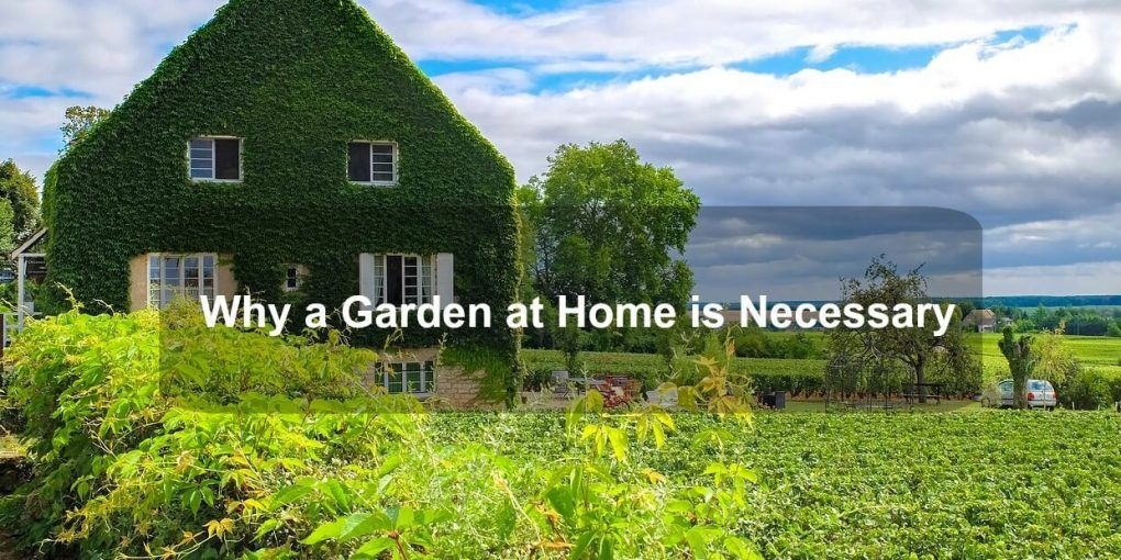 Why a Garden at Home is Necessary