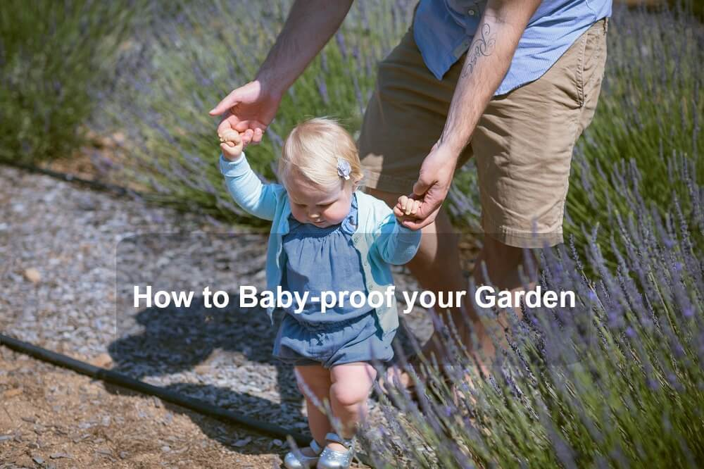 How to Baby-proof your Garden