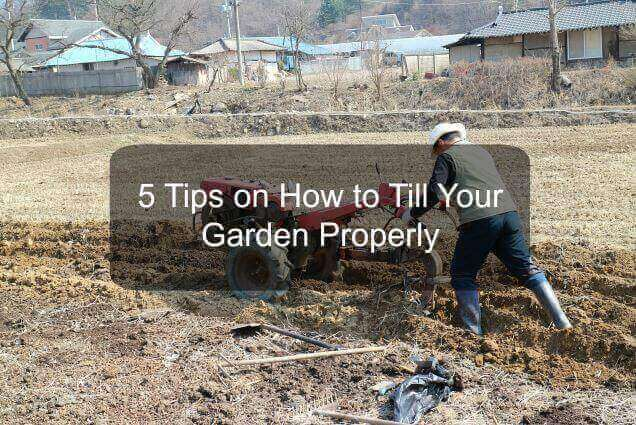 How to till garden properly
