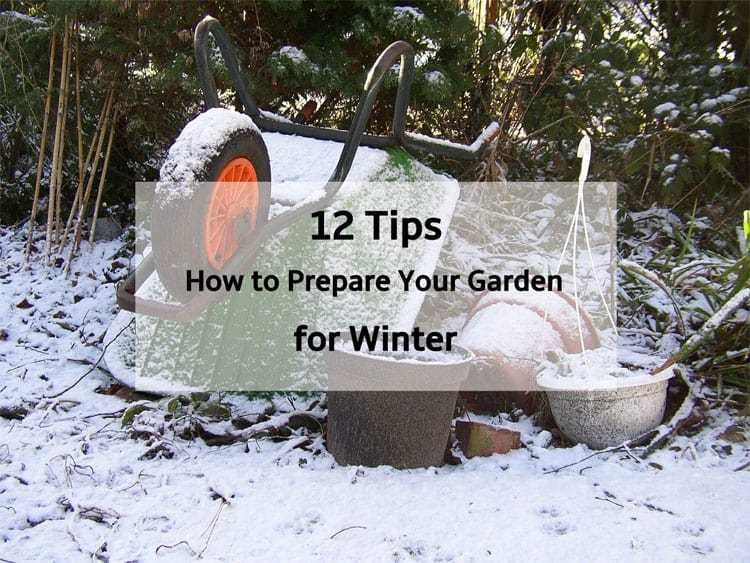 12 incredibly easy ways to prepare your garden for winter
