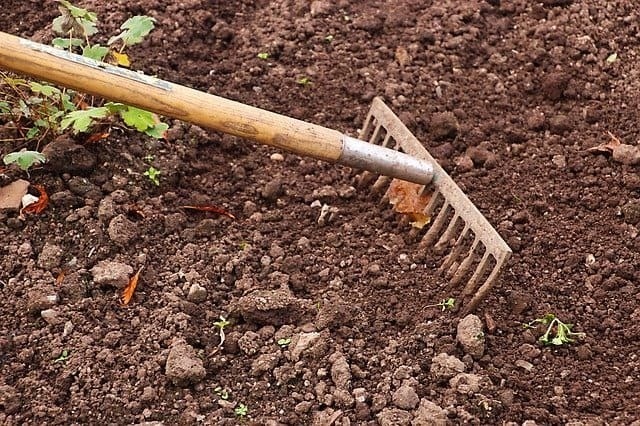 What Are The 20 Most Common Gardening Tools